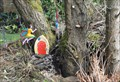 Image for Great Northern Rail Trail Fairy House - Cullingworth, UK