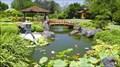 Image for Edogawa Japanese Gardens - East Gosford, NSW