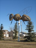 Image for World's Largest Bee - Falher, Alberta
