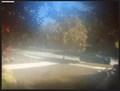 Image for Waverley St Webcam - Palo Alto, CA