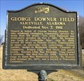 Image for George Downer Field - Aliceville, AL