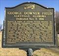 Image for George Downer Field - Aliceville, AL
