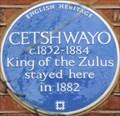 Image for Cetshwayo - Melbury Road, London, UK