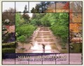 Image for CSU, Chico Meriam Library Web Cam