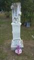 Image for Samuel M. Whittington - Liberty Cemetery - Martin's Mill, TX