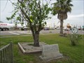 Image for The Mulberry Tree - Mulberry, FL