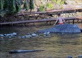 Image for Big Rock Swimming Hole - Salmo, British Columbia
