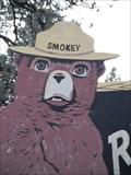 Image for Smokey Bear - SR 373, Greer, Arizona