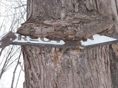 Ici la photo montre ce qui reste de visible de la flèche de métal et le replie de l