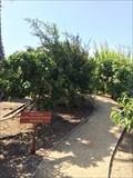 Image for La Jolla Shores - San Diego, CA
