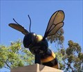 Image for Bee - Mission Viejo, CA