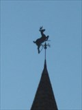 Image for Leaping Stag - Jay, Vermont