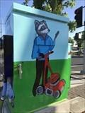 Image for Raccoon Box - Dublin, CA