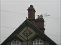 Image for 1895 - Old Cottage in Estaines Parva, Essex