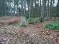 Image for Beacon Hill Triangulation Pillar - Colgate, West Sussex