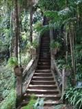 Image for Grand Staircase - Paronella Park - Mena Creek - QLD - Australia