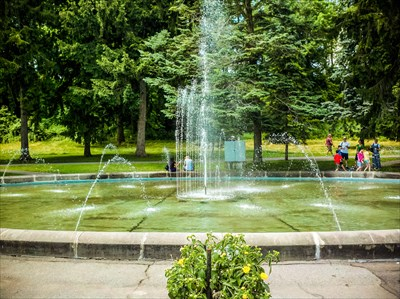 Zimmerman Fountain Pond Niagara Falls On Fountains On