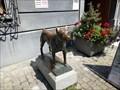 Image for Dog Statue - Museum Lindwurm - Stein am Rhein, Switzerland, SH