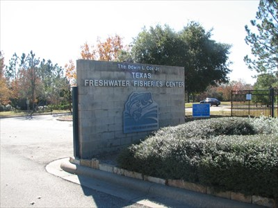 texas freshwater fisheries center athens texas fish
