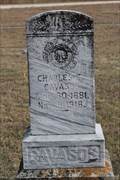Image for Charles Cavazos -- George's Creek Cemetery, Somervell Co TX