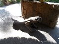 Image for Frog Bench  -  Escondido, CA