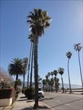 Image for William Carpenter  -  Santa Barbara, CA