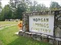 Image for Morgan Springs