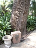 Image for Soldiers of War of 1812 Dedicated Tree -  San Antonio, TX, USA