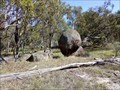 Image for Eternity - Balancing Rocks - Deepwater, NSW, Australia