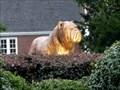 Image for South Carolina State University Bulldog - Orangeburg, SC