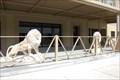 Image for Lion pair - Helena, Montana