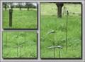 Image for muskito figures - Damme - West Vlaanderen - Belgium