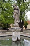 Image for Immaculata in Peace Square / Námestí míru (Kourim - Central Bohemia)