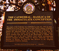 Image for The Cathedral-Basilica of the Immaculate Conception