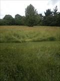 Image for Great Down Park, Bursledon - Wild Flower Meadow