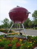 Image for Giant Weber Grill