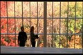 "Image for The Metropolitan Museum of Art, ""When Harry Met Sally,"" Manhattan New York"
