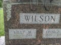 Image for 102 - Lilly M. Wilson, Washburn, MO