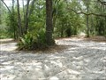 Image for Jennings State Forest Offroad Trail - Jacksonville, FL