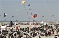 Image for Rencontres Internationales de Cerfs-Volants, Berck-sur-Mer, France