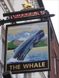 Image for The Whale- Buckingham
