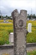 Image for John W. Mandeville - Evergreen Cemetery, Galveston, TX
