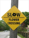 Image for Flower Crossing - West End Florist & Garden Center, Evanston, IL