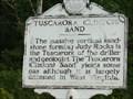 Image for Tuscarora (Clinton) Sand