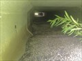 Image for Blanding's Turtle Tunnel TCV1 - Kanata, Ontario