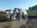 "Image for Papa Joe's Fireworks Elephants - ""Tickling the Ivories"" - Hardeeville, SC"