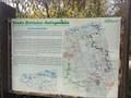 Image for Senda Botanica Autoguiada - Parque Retiro, Madrid, Spain