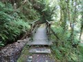Image for Footbridge in Ballure Glen - Maughold, Isle of Man
