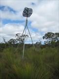 Image for Honeysuckle Trig Station - Caroline Forest SE South Australia