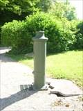 Image for Pompe à eau du jardin de Granzay-Gript, France
